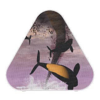 Orcas Bluetooth Speaker
