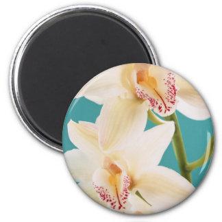 Orchid 6 Cm Round Magnet
