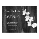 Orchid & Barnwood Wedding Save The Date Postcard