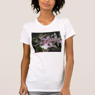 Orchid Beallara Shirt