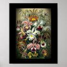Orchid Botanical Print