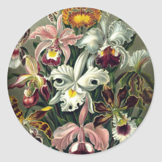 Orchid Botanical Print Classic Round Sticker