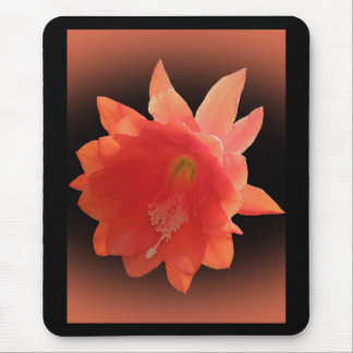 Orchid Cactus - Epiphyllum Ackermannii - Blossom Mouse Mat