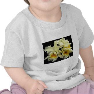 Orchid cattleya Doug Johnson flowers T Shirts