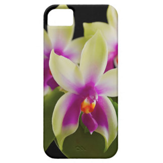 Orchid Cell Phone Case iPhone 5/5s