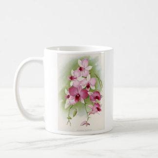 Orchid - Dendrobium Phalaenopsis Basic White Mug