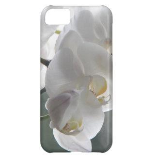 Orchid Flower Faith Love Peace Destiny Gift Case For iPhone 5C