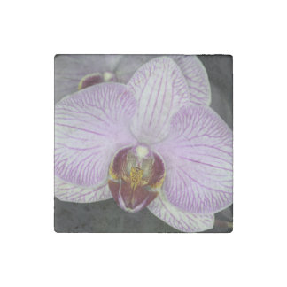 Orchid Flower Stone Magnet