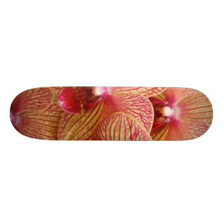 Orchid Flower Skate Board Decks