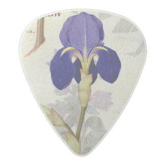 Orchid & Fumitory or Bleeding Heart Hedera & Iris Acetal Guitar Pick