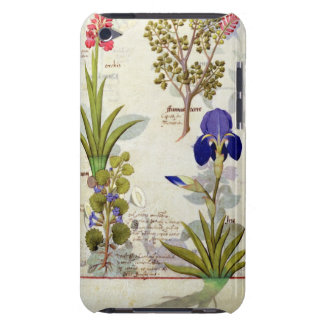 Orchid & Fumitory or Bleeding Heart Hedera & Iris Barely There iPod Case
