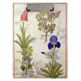 Orchid & Fumitory or Bleeding Heart Hedera & Iris Clipboard