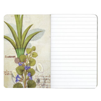 Orchid & Fumitory or Bleeding Heart Hedera & Iris Journal