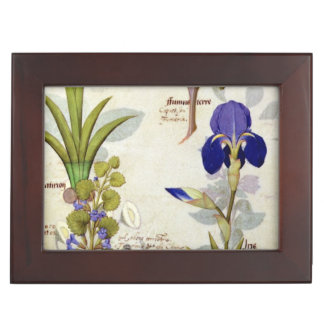 Orchid & Fumitory or Bleeding Heart Hedera & Iris Keepsake Box
