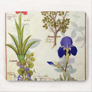 Orchid & Fumitory or Bleeding Heart Hedera & Iris Mouse Mat