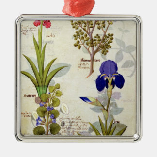 Orchid & Fumitory or Bleeding Heart Hedera & Iris Silver-Colored Square Decoration