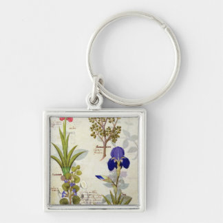 Orchid & Fumitory or Bleeding Heart Hedera & Iris Silver-Colored Square Key Ring
