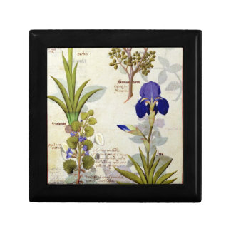 Orchid & Fumitory or Bleeding Heart Hedera & Iris Small Square Gift Box