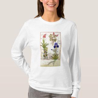 Orchid & Fumitory or Bleeding Heart Hedera & Iris T-Shirt