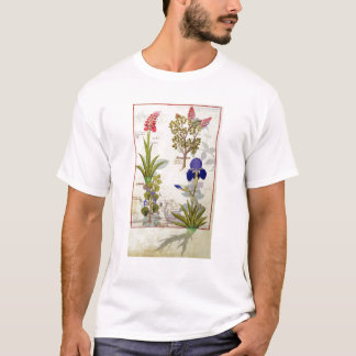Orchid & Fumitory or Bleeding Heart Hedera & Iris T-Shirt