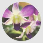 Orchid, Hawaiian Classic Round Sticker