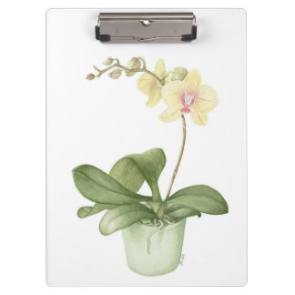 Orchid in a Green Pot Watercolour Clipboard