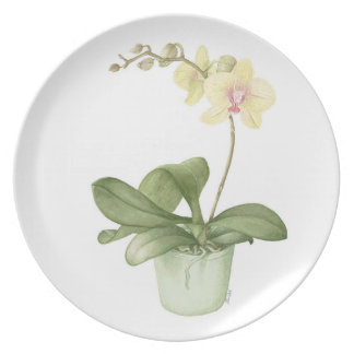 Orchid in a Green Pot Watercolour Melamine Plate