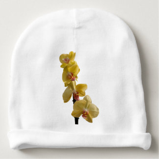 orchid in bloom for present baby beanie