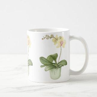 Orchid in ?Green Pot Botanical Watercolour Basic White Mug