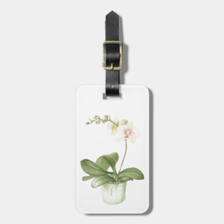 Orchid in Green Pot in Botanical Watercolour Luggage Tag