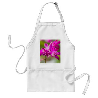 orchid in the garden standard apron