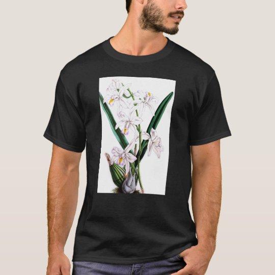 Orchid Laelia Albida, var Rosea T-Shirt