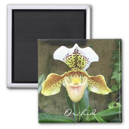 Orchid Magnet