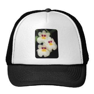 Orchid - Miltoniopsis - The Three Amigos Trucker Hat