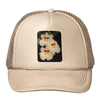 Orchid - Miltoniopsis - The Three Amigos Mesh Hat