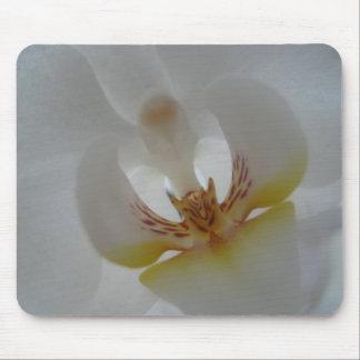 Orchid mousemat