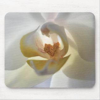 Orchid Mousepad