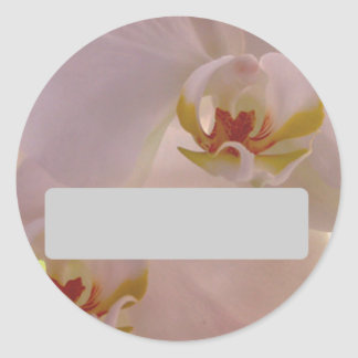 Orchid Name Sticker