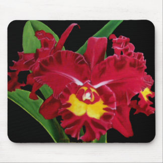 Orchid Oil on Canvas Mousepad 2