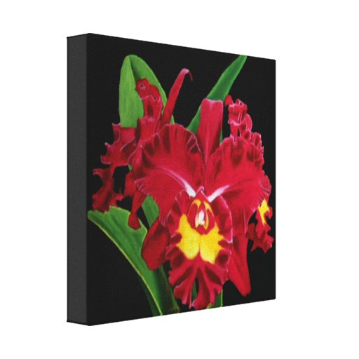 Orchid Oil Painting Wrapped Canvas Stretched Canvas Print