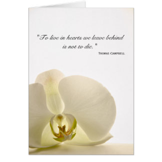 Orchid on White Sympathy Thank You Card