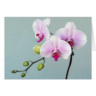 Orchid Orji Card