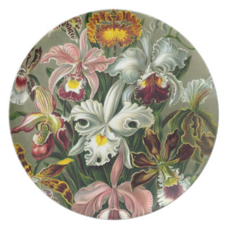 Orchid Paradise Plate