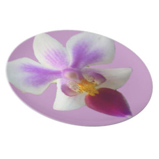 Orchid Party Plate