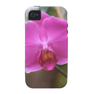 ORCHID pink Pearl Flower Love Romance Expression Case For The iPhone 4