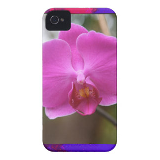 ORCHID pink Pearl Flower Love Romance Expression iPhone 4 Cover