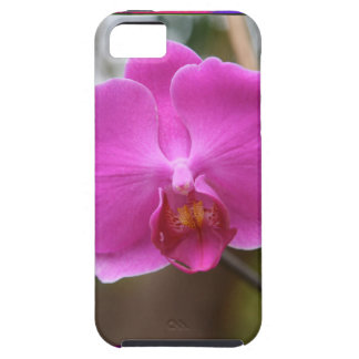 ORCHID pink Pearl Flower Love Romance Expression iPhone 5 Case