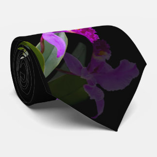 Orchid Reflected on Black Tie