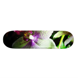 Orchid Skate Deck