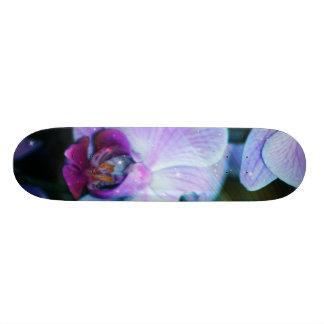 Orchid Skateboard Deck